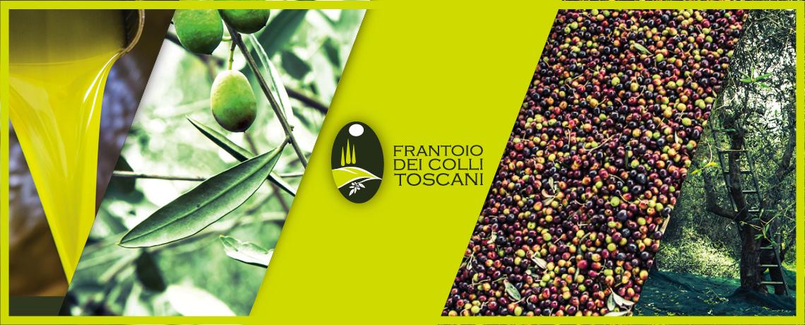 slide-frantoio41